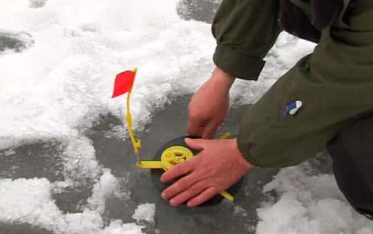Жерлицы на окуня зимой – что это и как сделать самому дома