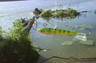 рыбалка летом на балансир