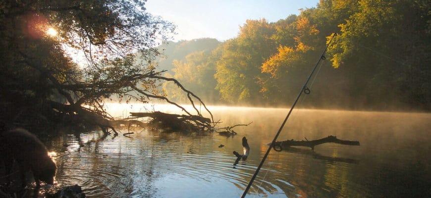 ловля леща фидером на реке и озере