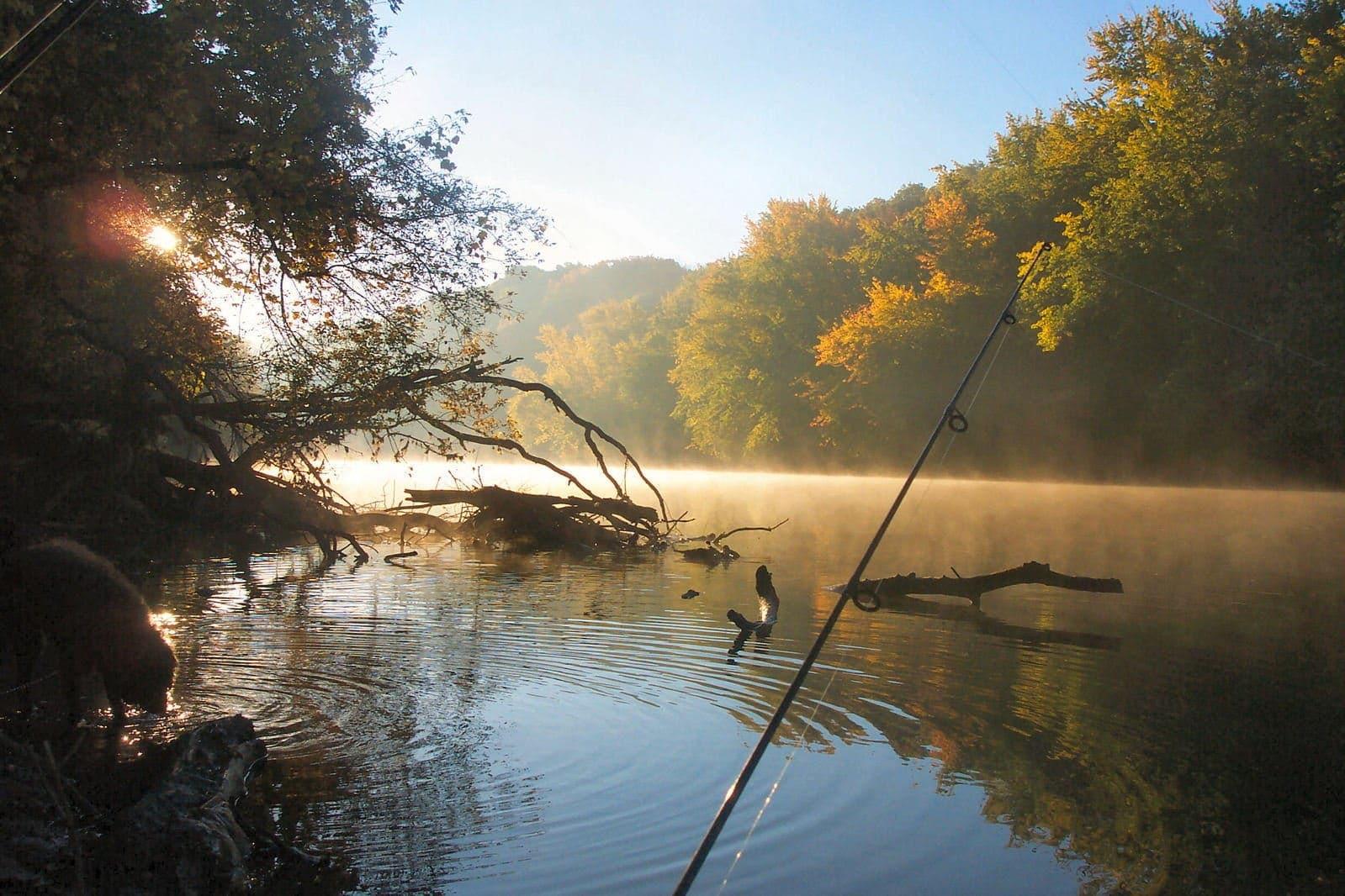 Ловля леща на фидер - ловля на течении и стоячей воде: осенью, летом
