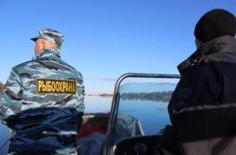 Штрафы за рыбную ловлю