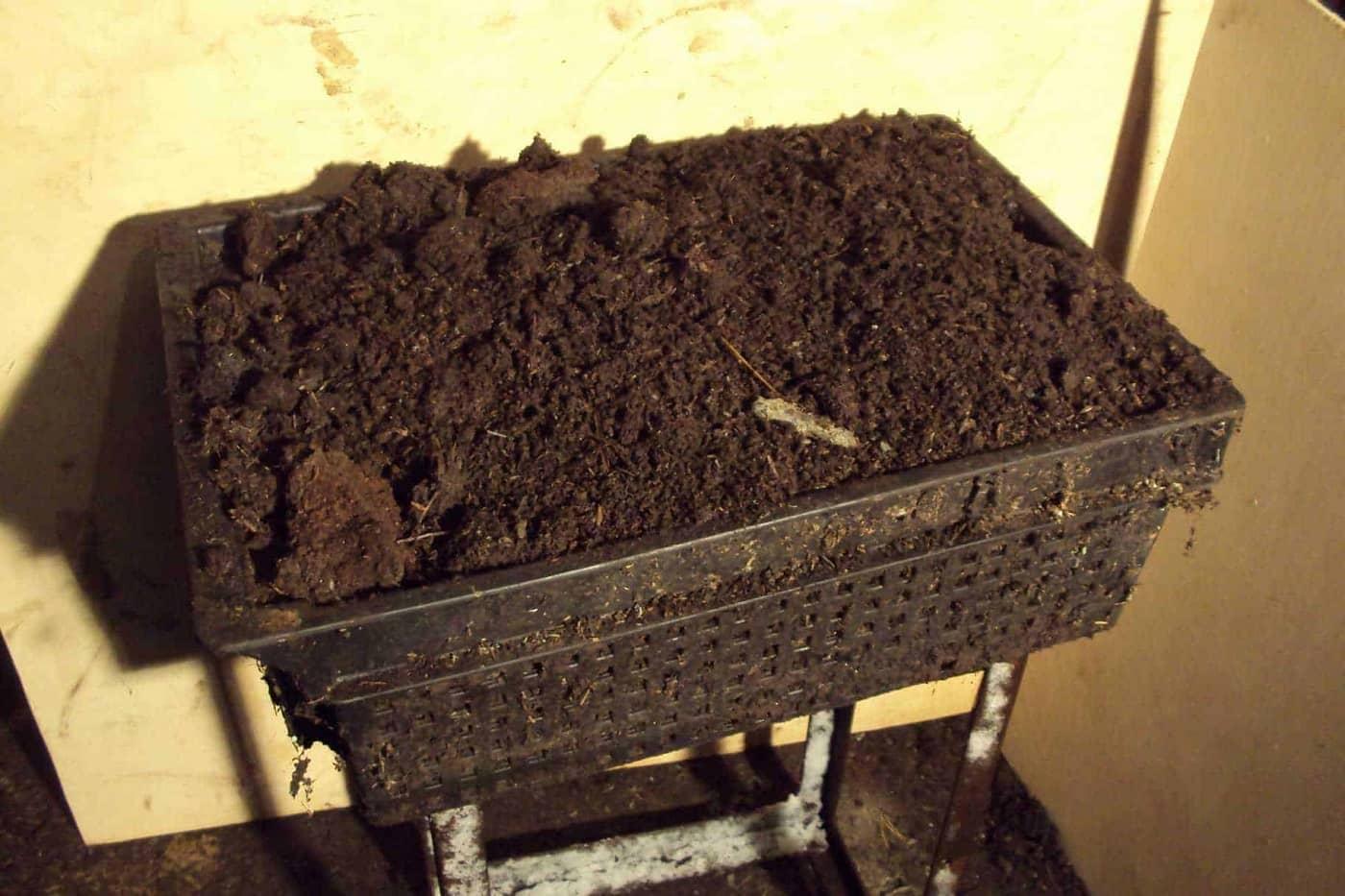 ящик для разведения червя