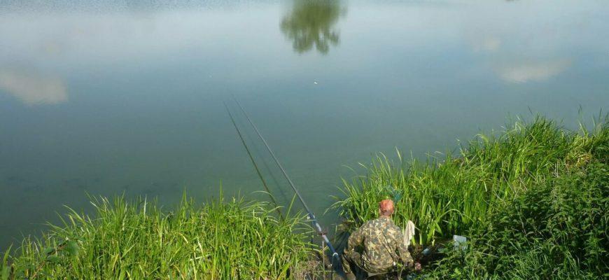 Куда поехать на рыбалку в Подмосковье