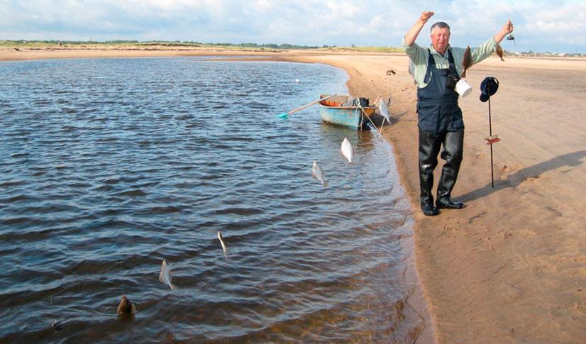 Ловля камбалы с берега