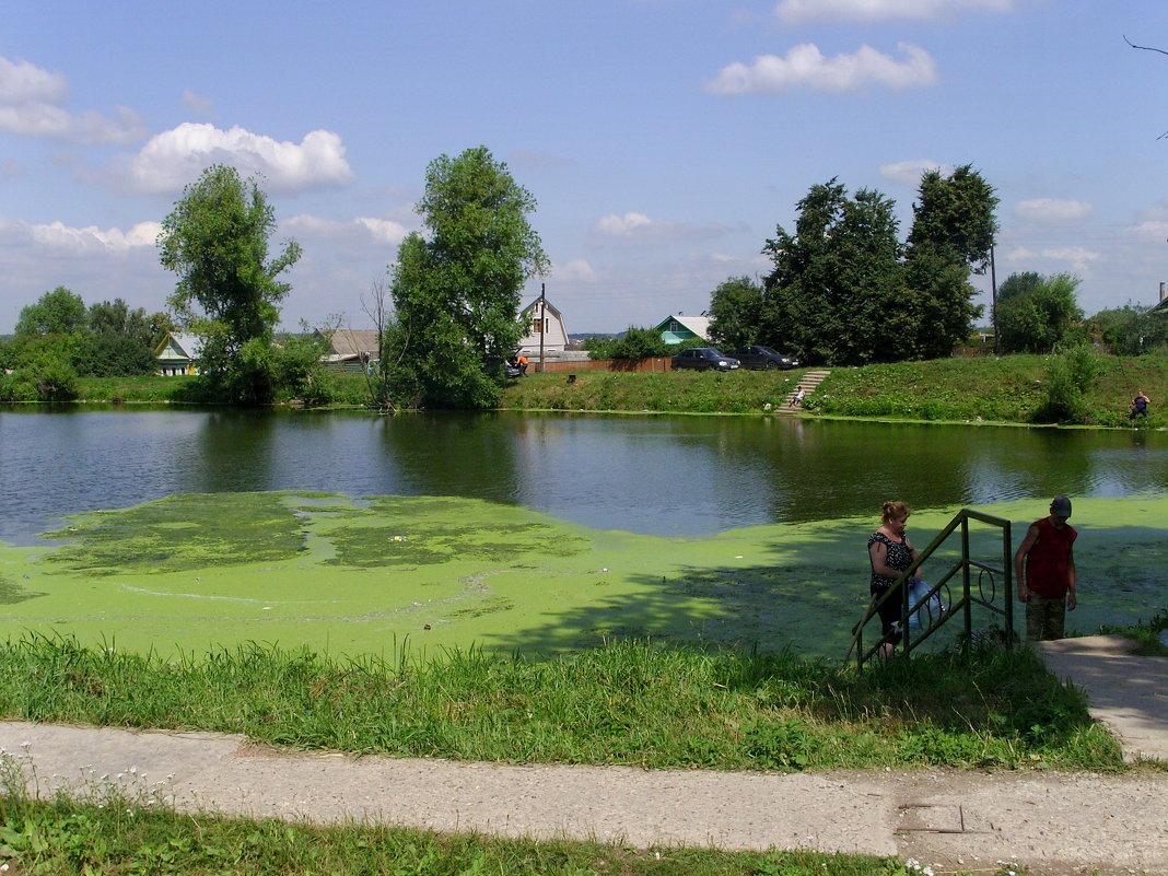 Пруд в селе Заворово