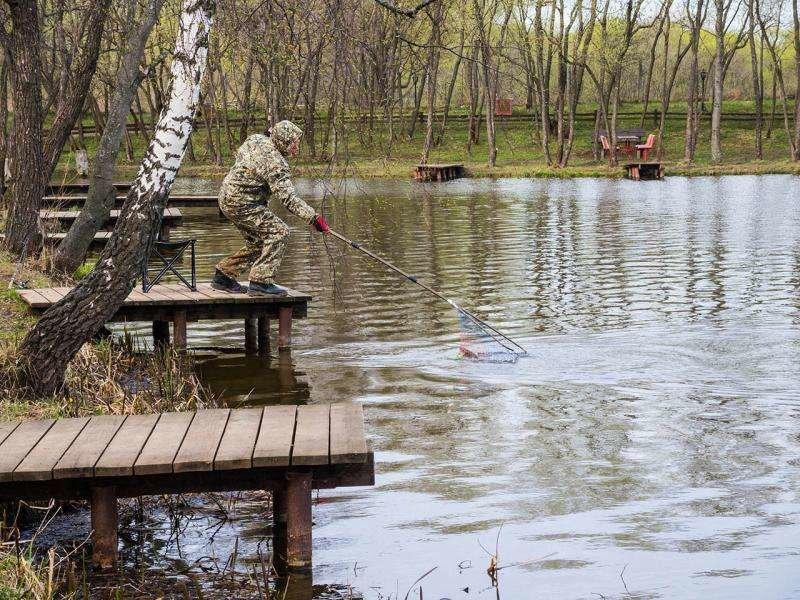 Рыболов Сосенки