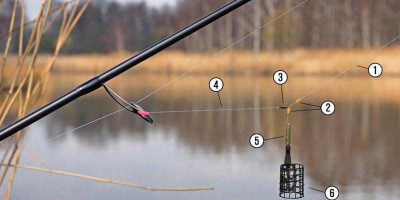 Рыбалка на фидер для начинающих: что включает фидерный набор, популярные техники ловли, а также этапы ловли на карася, карпа и сазана
